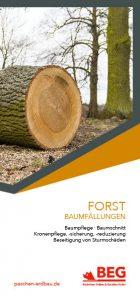 Die Titelseite des Flyers Forstdienstleistung – Baumfällungen.