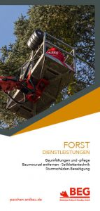 Die Titelseite des Flyers Forstdienstleistung zum kostenlosen Download.