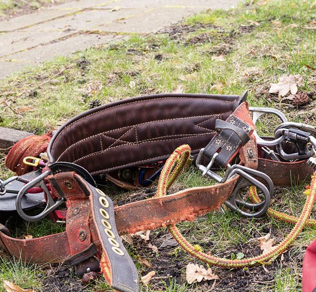 Ausrüstung für die Seilklettertechnik im Detail.