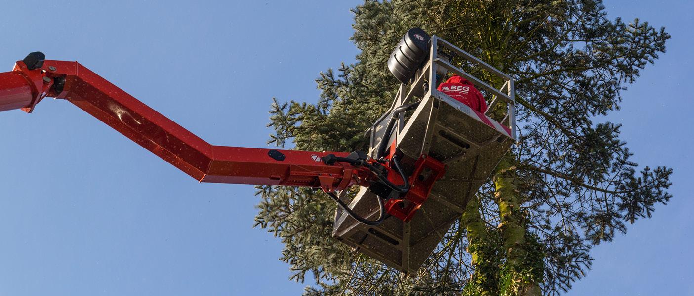 Baumfällungen mit einer Hebebühne, diese stellen eine Aufgabe in der Forstdienstleistung dar.