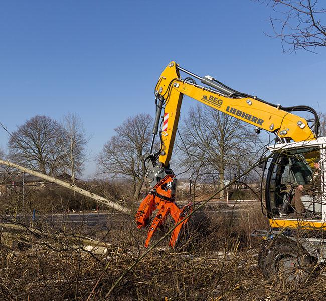 Kontrolliertes Fällen von Bäumen mit Hilfe unseres Woodcracker.