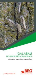 Die Titelseite des Flyers GaLaBau – Eichenprozessionsspinner.
