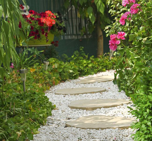 Ein gepflegter Gartenweg eingerahmt Pflanzen und Blüten, die Gartenpflege von ihrer schönsten Seite.