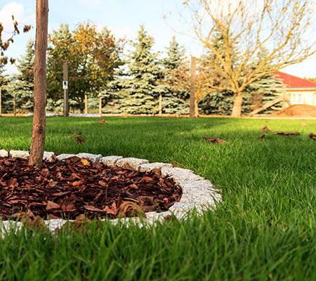 Schnell zum gepflegten Rasen. Im Garten- und Landschaftsbau erhalten Sie einige wertvolle Tipps zur Rasenpflege.