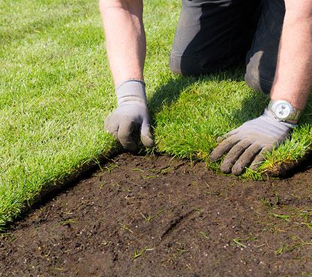 Das Verlegen von Rollrasen ist im Garten- und Landschaftsbau eine Arbeit, die einige Erfahrungen benötigt.