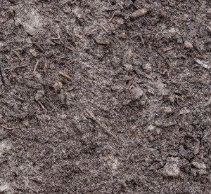 Kompostboden mit reichhaltigem organischen Material.